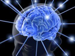 Waspada! Inilah Bahan Perusak Otak yang Dipakai Setiap Hari
