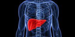Inilah Tanda Kalau Liver Anda Bermasalah