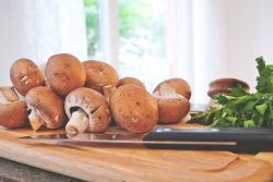 Jamur, Pengganti Daging yang Tak Kalah Bernutrisi