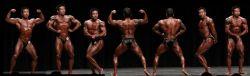 Pose Wajib yang Harus Diperlihatkan dalam Olahraga Binaraga