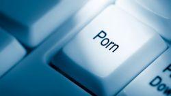 Waspada, Pornografi Lebih Berbahaya Jika Dibandingkan dengan Narkoba