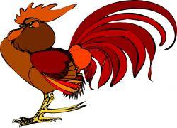 Yuk, Dengarkan Suara Ayam Berkokok