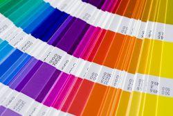 Inilah Petunjuk Warna Pantone 271 Tahun yang Lalu!