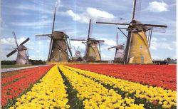 Holland Scholarship, Beasiswa S1-S2 ke Belanda