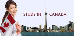 Mau Beasiswa S1 Kanada 2019 - 2020 di York University? Tersedia Disini