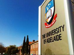 Ini Dia Beasiswa S1 dan S2 University of Adelaide, Australia